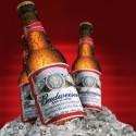 Nos-testamos-o-chatbot-da-budweiser-que-vende-cerveja-pelo-twitter-televendas-cobranca-oficial