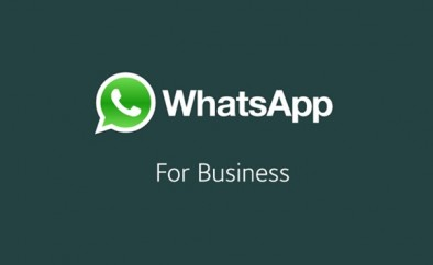 Whatsapp-conta-de-empresa-sera-identificada-como-verificada-confirmada-ou-comercial-televendas-cobranca
