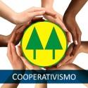 Consorcios-e-cooperativas-de-credito-crescem-no-pais-diz-bc-televendas-cobranca