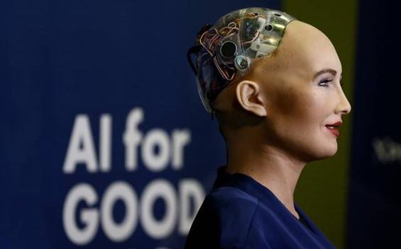 Robos-ganham-cidadanias-e-tem-determinacao-de-direitos-e-deveres-televendas-cobranca-1