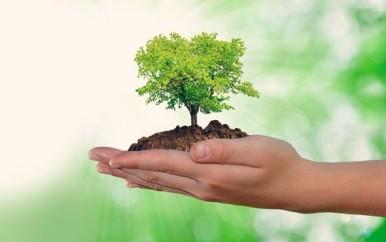 O-que-precisa-mudar-na-gestao-socioambiental-dos-bancos-televendas-cobranca