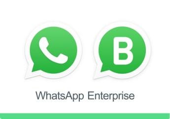 Whatsapp-enterprise-estrategias-atendimento-televendas-cobranca-1