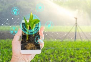 Tecnologia-revoluciona-mercado-de-credito-rural-televendas-cobranca-1